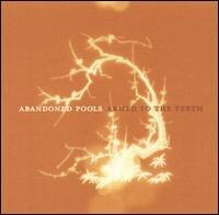 Abandoned Pools - Armed to the Teeth (Cover Artwork)