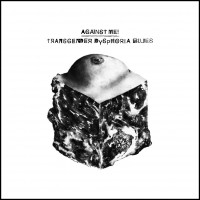 Against Me! - Transgender Dysphoria Blues (Cover)