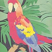 Algernon Cadwallader - Parrot Flies (Cover Artwork)