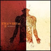 Between the Buried and Me - The Anatomy Of (Cover Artwork)