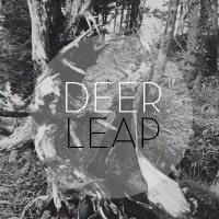Deer Leap - Here. Home. (Cover Artwork)