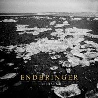 Endbringer - Bruises [7-inch] (Cover Artwork)