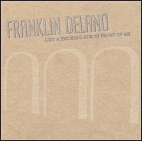 Franklin Delano - Like A Smoking Gun In Front Of Me (Cover Artwork)