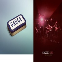 Gauge - Mints [7-inch] / Gauge : 153 DVD (Cover Artwork)