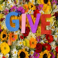 GIVE - GIVE [12 inch] (Cover Artwork)