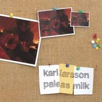 Karl Larsson - Pale As Milk (Cover Artwork)