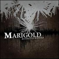 Marigold - Audible to Animals (Cover Artwork)