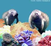 Monet.Madrid.Madagascar. - If Manatees Had Trunks (Cover Artwork)