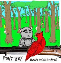 Pony Boy - Sexual Assault Rifle [12 inch] (Cover Artwork)