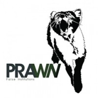 Prawn - False Institutions (Cover Artwork)