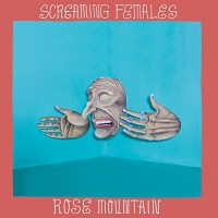 Screaming Females - Rose Mountain (Cover)