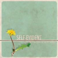 Self-Evident - We Built A Fortress on Short Notice (Cover Artwork)