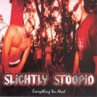 Slightly Stoopid - Everything You Need (Cover Artwork)