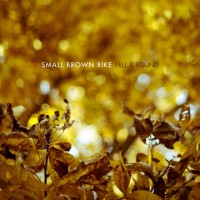 Small Brown Bike - Fell & Found (Cover Artwork)