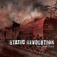 Static Revolution - You Look Good (Cover Artwork)