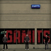 The Gamits - Parts (Cover Artwork)