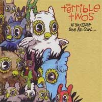 The Terrible Twos - If You Ever See an Owl... (Cover Artwork)