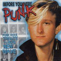 Various - Before You Were Punk (Cover Artwork)
