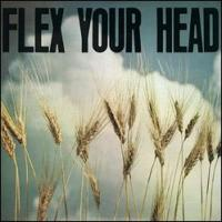 Various - Flex Your Head [remastered] (Cover Artwork)