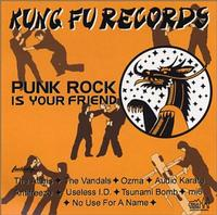 Various - Punk Rock Is Your Friend (Cover Artwork)