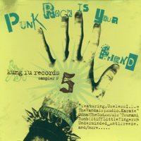 Various - Punk Rock Is Your Friend Vol. 5 (Cover Artwork)