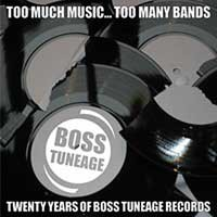 Various - Too Much Music... Too Many Bands: Twenty Years of Boss Tuneage Records (Cover Artwork)