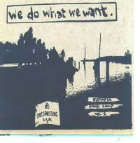 Various - We Do What We Want [7 inch] (Cover Artwork)