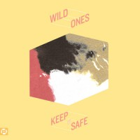 Wild Ones - Keep It Safe (Cover Artwork)