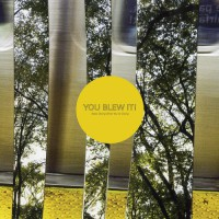 You Blew It! - Keep Doing What You're Doing (Cover Artwork)